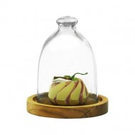 Alibambah Toples Kaca Dengan Base Kayu Set - Dome A + Kayu (2,000 ml)